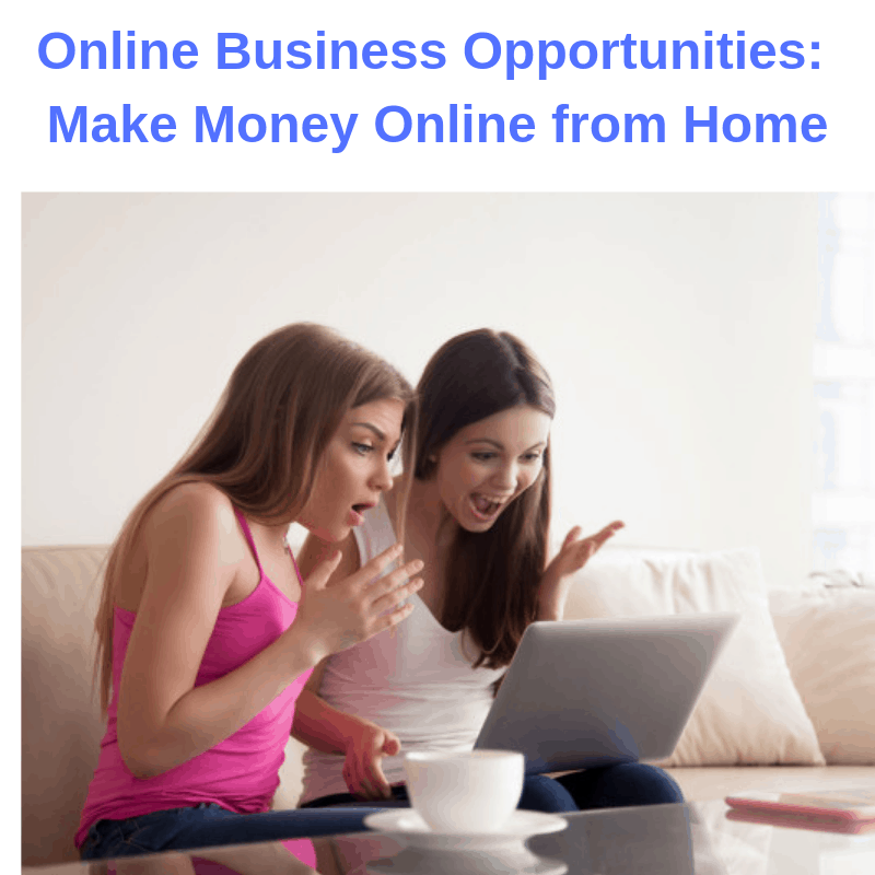 Online Business Opportunities: Make Money Online from Home