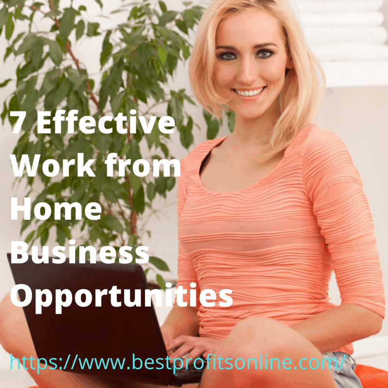 7 Effective Work from Home Business Opportunities